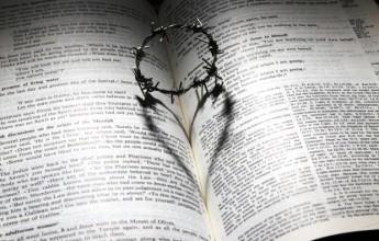 אהבה שנאה יראה כאב תשובה