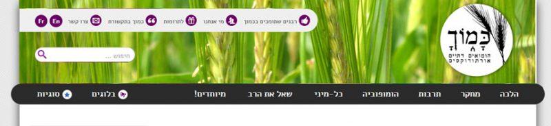 כותרת האתר עם שדה חיטה בכותרת